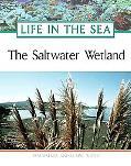 Saltwater Wetland