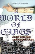 A World of Gangs: Armed Young Men and Gangsta Culture (Globalization and Community)