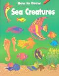 How to Draw Sea Creatures - Barbara Soloff Levy - Paperback