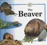 The Beaver (Life Cycles (Raintree Hardcover))