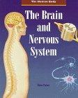 The Brain and Nervous System (Human Body)