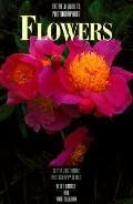 The Field Guide to Photographing Flowers - Allen Rokach - Paperback
