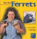My Pet Ferrets