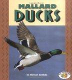 Mallard Ducks (Pull Ahead Books)