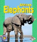 African Elephants - Shannon Knudsen - Paperback