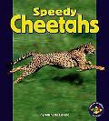 Speedy Cheetahs