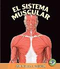 Sistema Muscular/the Muscular System