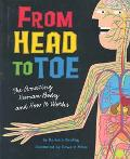 From Head to Toe The Amazing Human Body and How It Works