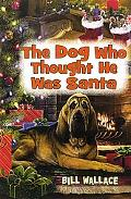 Dog Who Thought He Was Santa