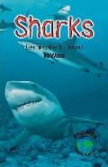 Sharks Learning the Sh Sound
