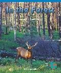 In the Forest: Learning Directional Concepts