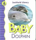 Baby Dolphin