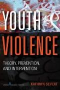Youth Violence : Theory, Prevention, and Interventions