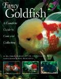 Fancy Goldfish A Complete Guide to Care and Collections