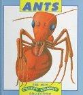 Ants (New Creepy Crawly Collection)