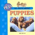 101 Facts About Pets: Puppies/Guinea Pigs/Iguanas/Kittens/Tropical Fish/Rabbits