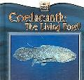 Coelacanth The Living Fossil