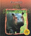 Little Hippopotamuses