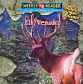 Elk/venado S That Live in the Mountains = Animales De Las Montanas