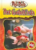 Pet Goldfish