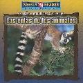 Colas de los Animales/ Animal Tails