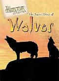Secret Lives of Wolves