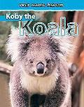 Koby the Koala