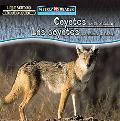 Coyotes Are Night Animals/Los Coyotes Son Animales Nocturnos