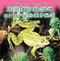 Animales De La Charca/Animals at the Pond
