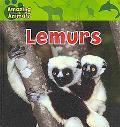 Lemurs (Amazing Animals)