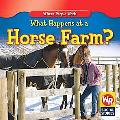 What Happens at a Horse Farm?
