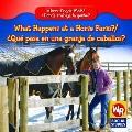 What Happens at a Horse Farm?/Qu' Pasa En Un Rancho de Caballos?