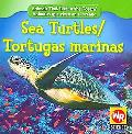 Sea Turtles/Tortugas Marinas