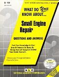 What Do You Know About Small Engine Repair
