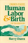 Human Labor and Birth