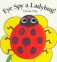 Eye Spy a Ladybug
