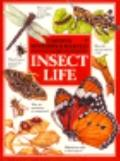 Mysteries and Marvels of Insect Life
