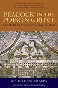 Peacock in the Poison Grove Two Buddhist Texts on Training the Mind  The Wheel-Weapon (Mtsho...