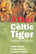After the Celtic Tiger: Challenges Ahead