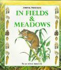 In Fields & Meadows