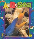 B Sea