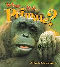 What Is a Primate?