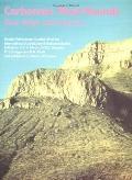 Carbonate Mud-Mounds Their Origin and Evolution