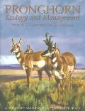 Pronghorn Ecology and Management