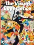 The Visual Experience