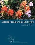 Guide to Plants of Yellowstone And Grand Teton National Parks