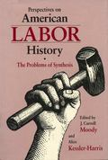 Perspectives on American Labor History The Problem of Synthesis