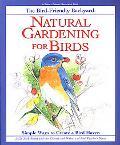Bird-Friendly Backyard Natural Gardening for Birds  Simple Ways to Create a Bird Haven