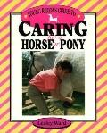 Young Rider's Guide to Caring for a Horse or Pony
