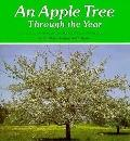 An Apple Tree Through the Year